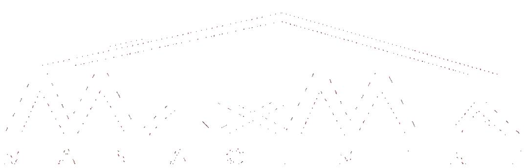 maxmia-transparent-logo